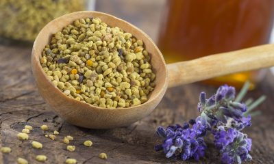 Bee pollen - health benefits, dosage, side effects and more