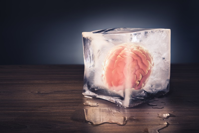 Scientists can now reanimate dead brains