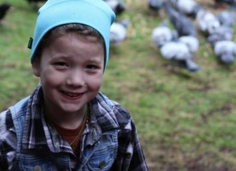 A child in Seattle receives gifts from the crows that visit her backyard