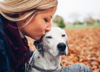 Dog owners are less likely to die following a stroke or cardiac arrest